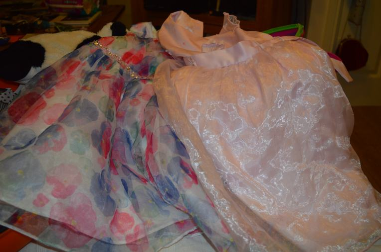 shayla's attempt at packing, how many princess dresses does a girl need?
