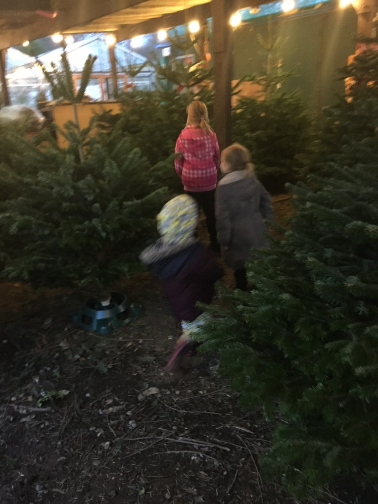 choosing a Christmas tree, siblings, December, christmas, dontcallmestepmummy, blended family