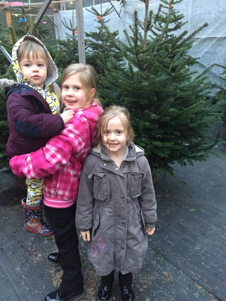 choosing a Christmas tree, siblings, December, Christmas, dontcallmestepmummy, blended family