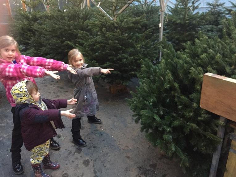 choosing a Christmas tree, Christmas, siblings, December, dontcallmestepmummy, blended family