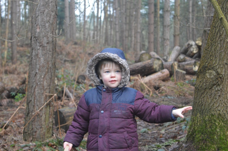 living arrows, Gruffalos Child Trail, Delamere Forest, country kids, Our Great 2015 Outdoors Bucketlist, dontcallmestepmummy, blended family, mummy blog