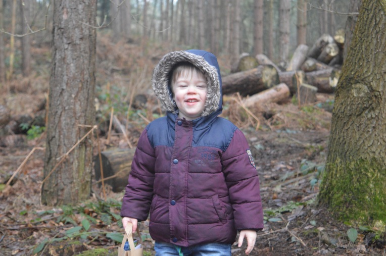 Gruffalos Child Trail, Delamere Forest, country kids, Our Great 2015 Outdoors Bucketlist, dontcallmestepmummy, blended family, mummy blog