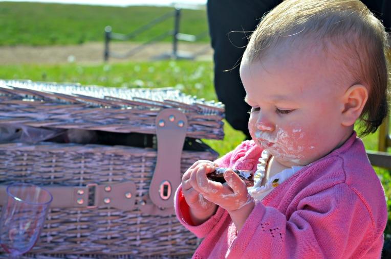 living arrows, dontcallmetepmummy, blended family, picnic, family picnic, mummy blog,