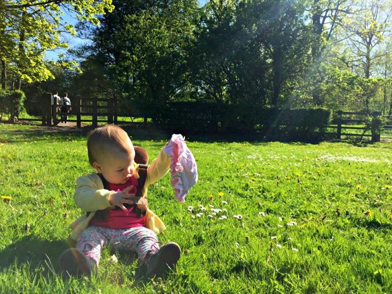 dontcallmestepmummy, mummy blog, parent blog, Eden's first walk