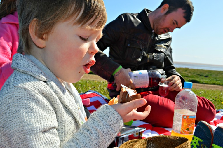 windy picnic, seaside, beach, dontcallmestepmummy, blended family, parent blogger, big family, toddler with chocolate, toddler picnic, toddler life,
