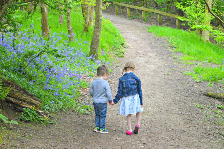 favourite family walks, dontcallmestepmummy, blended family, mummy blog, the ordinary moments, woodland walks, siblings, bluebells, holding hands
